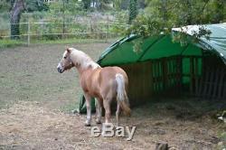 Abri tunnel de jardin pour voiture, chevaux, ânes ou bois Casado MINI 4,50m x 6m