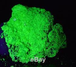 Uranocircite Autunite 13 grammes Les Oudots, France